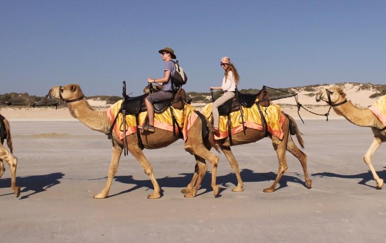 mia_und_ich_blog_mode_fashion_travel_reise_australia_australien_broome_cablebeach_camels_westernaustralia