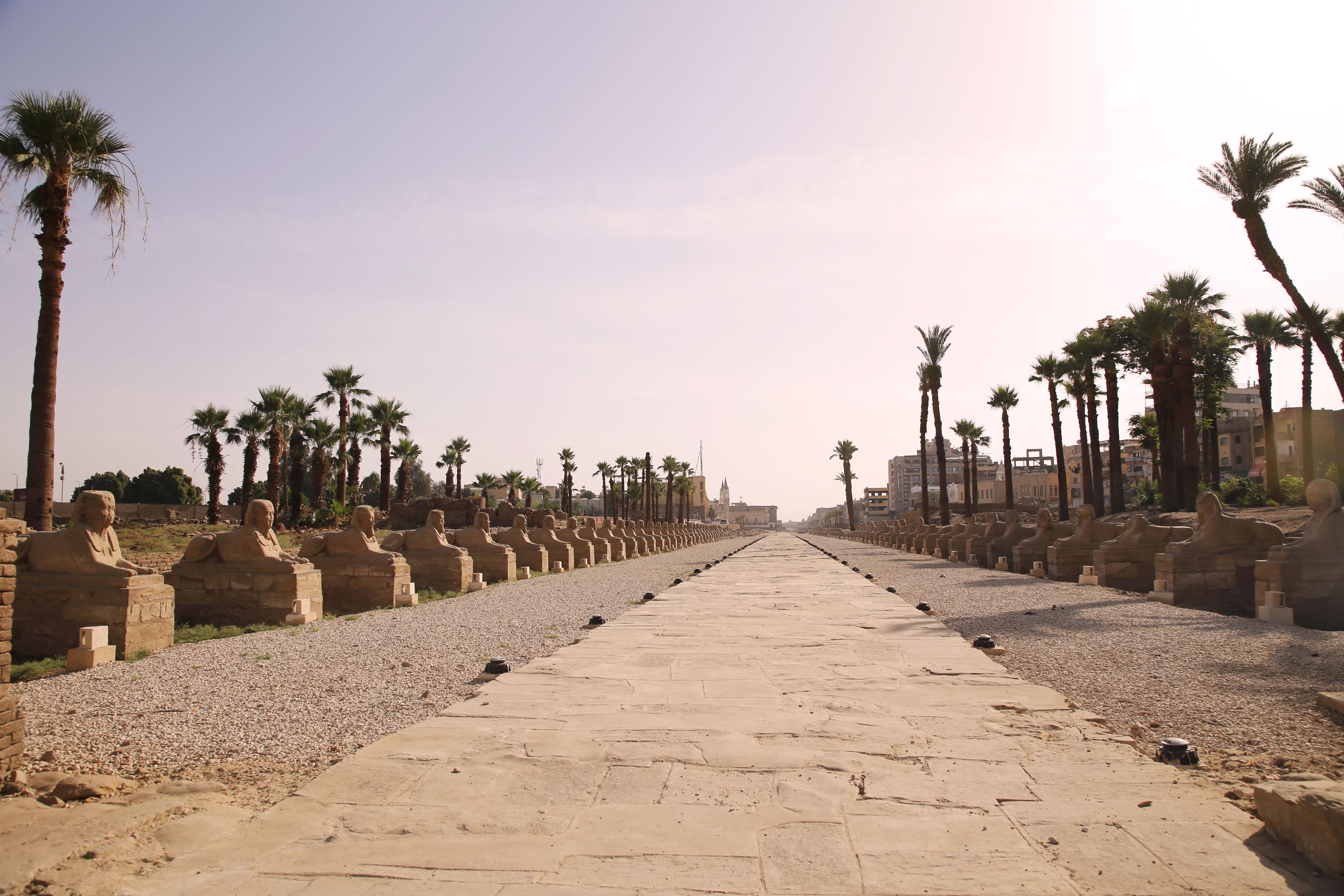 mia und ich blog Sphingenallee Luxor Tempel  Ägypten Egypt