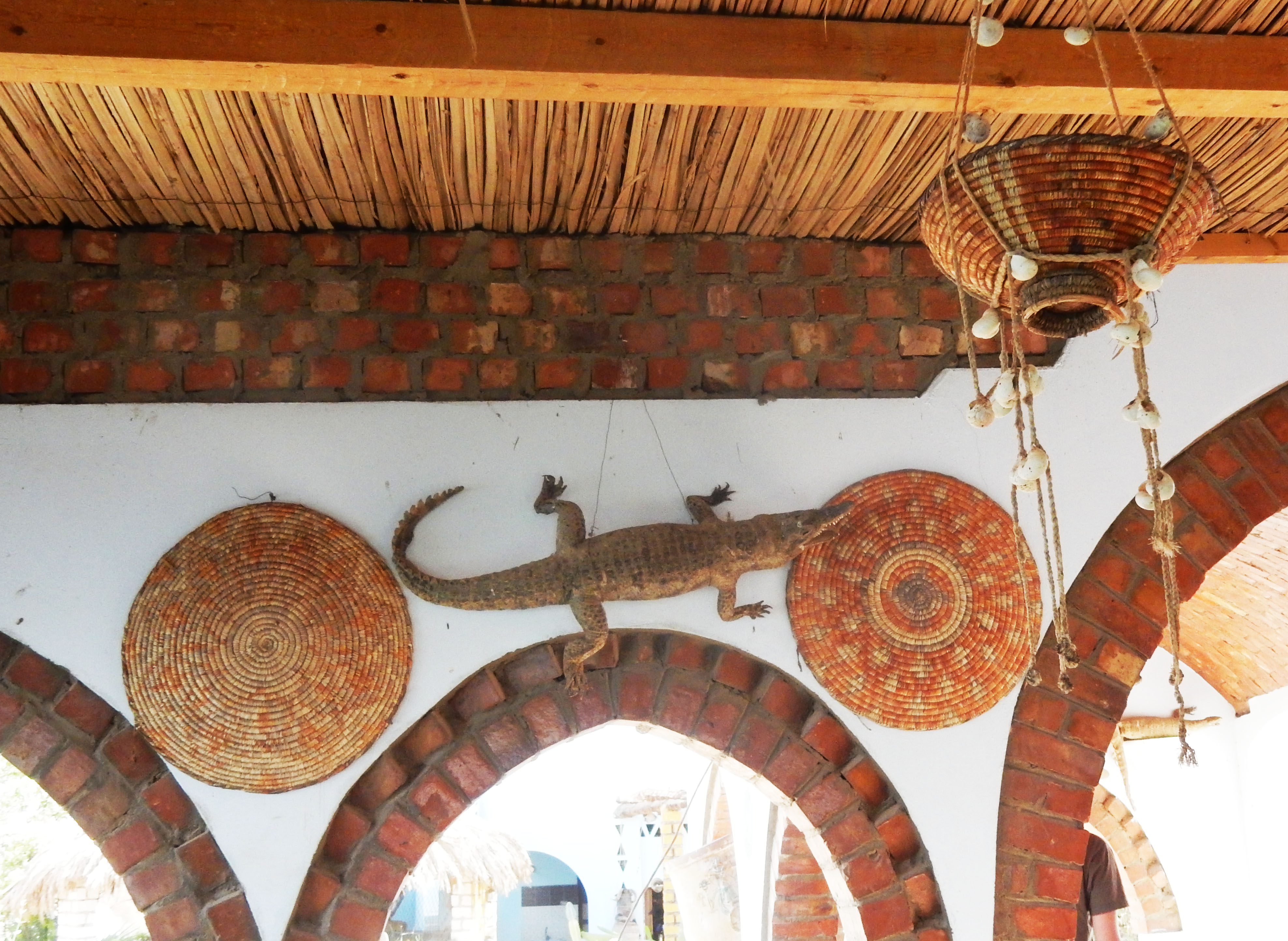 mia und ich blog Nubierdorf Krokodil Assuan Ägypten Egypt