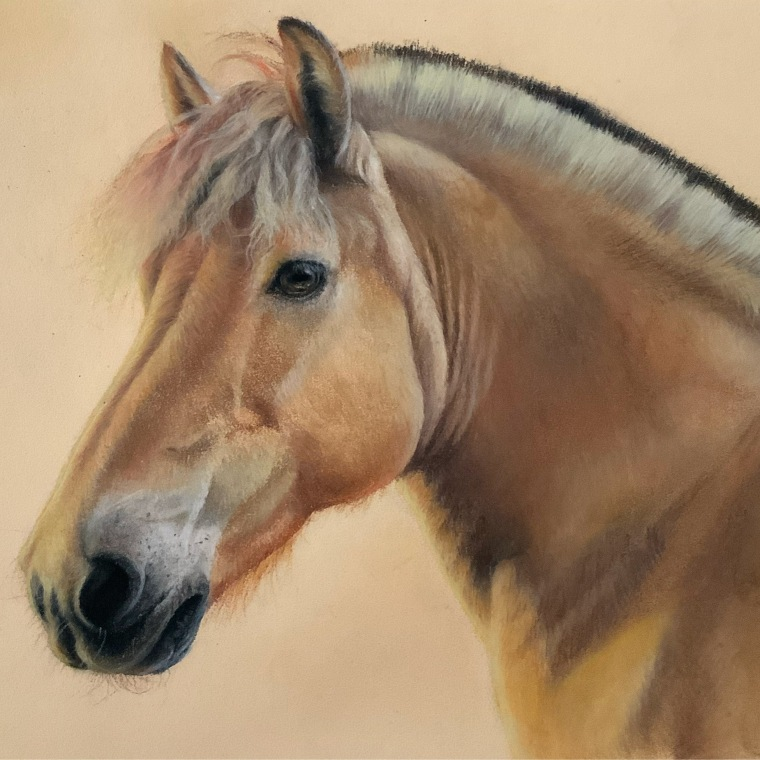 Hakon . Michaela Stocker . Equestrian . Art
